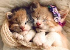 Trefl Sleeping cats 500 dielikov
