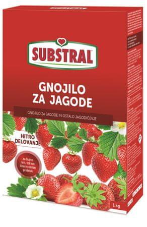 Substral specialno mineralno gnojilo za jagode, 1 kg