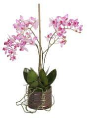 Shishi Kis orchidea virágcseréppel 40 x 25 cm sötét rózsaszín