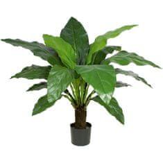 A La Maison Umelá rastlina Zamiokulkas, 110 cm