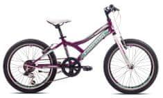 Capriolo MTB Diavolo 200/6HT dječji bicikl, ljubičasti/bijeli