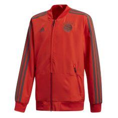 Adidas FCB PRE JKT Y | - 176