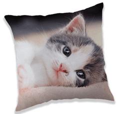 Jerry Fabrics Kitten