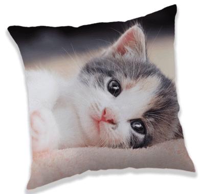Jerry Fabrics Kitten vzglavnik