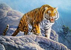Castorland Puzzle Tygr na skále 500 dílků