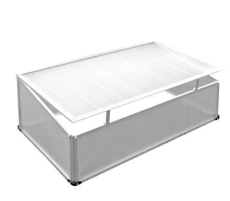 Linder Exclusiv Szklarnia skrzynia ogrodowa MC4362 120x80x30/40 cm