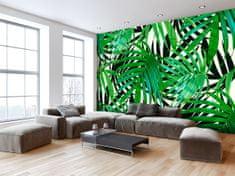 Murando DeLuxe Tapeta Tropické listy Velikost: 300x210 cm