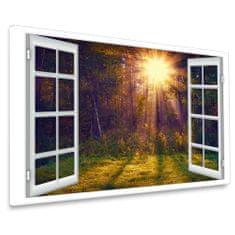 InSmile 3D obraz ráno z okna Velikost: 120x90 cm