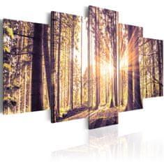 Murando DeLuxe Obrazy - vítání lesa Velikost: 220x110 cm