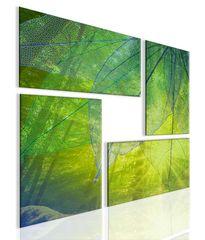 InSmile Obraz atypický obraz les Velikost: 80x80 cm