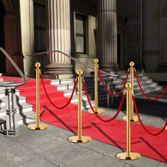 shumee 3-dielna sada VIP vymedzovacích stĺpikov nehrdzavejúca oceľ zlatá