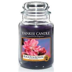 Yankee Candle vonná svíčka Black Plum Blossom 623 g