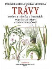 Jaromír Šikula: Trávy - traviny a trávníky v ilustracích