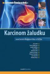 a kolektiv Jaromír Šimša: Karcinom žaludku