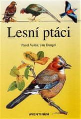 Jan Dungel: Lesní ptáci