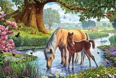 Schmidt Puzzle Koně v řece 150 dílků