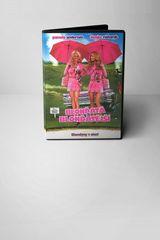 DVD Blonďatá a blonďatější
