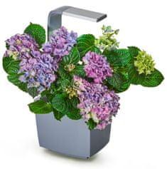 Tregren Tregren T3 Kitchen Garden, šikovný kvetináč, sivý