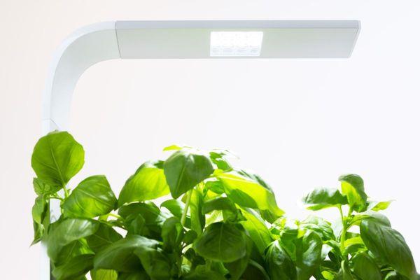 Šikovný kvetináč Tregren T6 Kitchen Garden, automatický