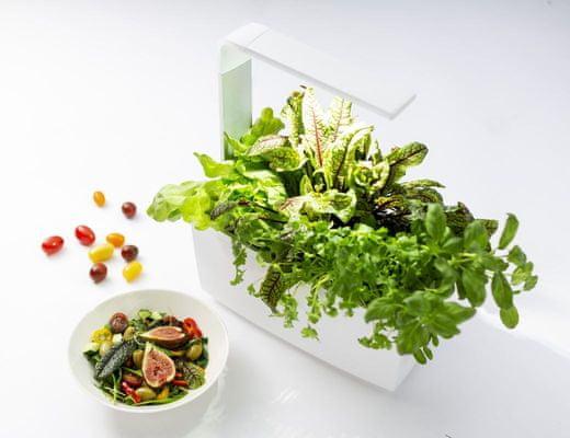 Tregren T6 Kitchen Garden, šikovný kvetináč, osemjadrový procesor, vysoký výkon, nízka spotreba.