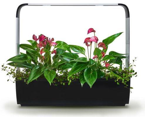 Tregren T12 Kitchen Garden, šikovný kvetináč,