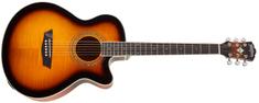 Washburn EA15 ATB-A-U Elektroakustická kytara