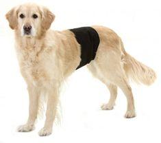 Karlie pas ochronny dla psów, czarny