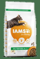 IAMS Vitality mačja hrana za odrasle mačke, svježa piletina, 3 kg