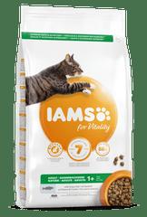 IAMS Vitality hrana za odrasle mačke, z oceansko ribo, 3 kg