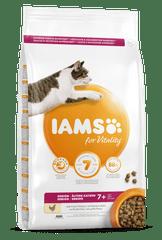 IAMS Vitality za starejše mačke, s svežim piščancem, 3 kg