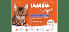 IAMS Delights Kopno & Morje hrana za odrasle mačke, v želeju, 12 x 85 g