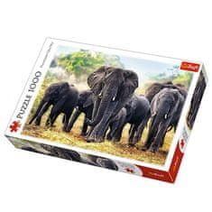 Trefl sestavljanka Afriški sloni, 1000 kosov