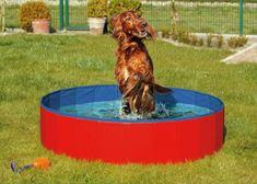 Karlie skládací bazén pro psy modro/červený 120x30 cm