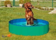 Karlie skládací bazén pro psy zeleno/modrý 160x30 cm