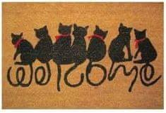 DURAmat Čisticí vstupní rohož PVC & mořská tráva CAT vícebarevná 40x60cm