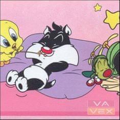 Vavex Dětská samolepicí bordura 6105 Warner Bros