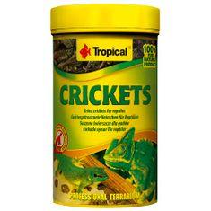 TROPICAL Crickets 100ml/10g sušených cvrčků pro plazy