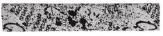 Emitex obloga za ročaj vozička