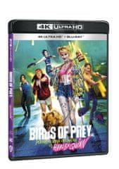 Birds of Prey (Podivuhodná proměna Harley Quinn) (2 disky) - Blu-ray + 4K Ultra HD