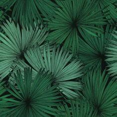 Caselio Vliesová tapeta Caselio 100047818, kolekce Jungle