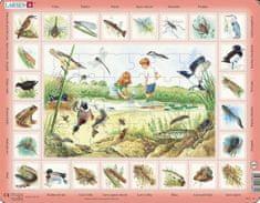 LARSEN Puzzle Život u rybníka 48 dílků