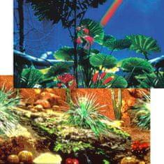 PENN PLAX Akvárium háttér kétoldalas 50cm/15m REPTILE Cactus Garde