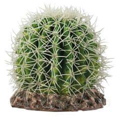 HOBBY Terraristik HOBBY Kaktus Sonora M 15x15x13cm