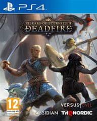 THQ Nordic Pillars of Eternity II: Deadfire igra (PS4)