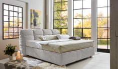 We-Tec Dizajnová manželská posteľ ERIN 180x200 cm, bez roštov a matracov