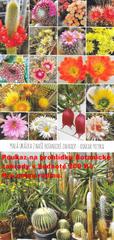 Poukaz na prohlídku Botanické zahrady v hodnotě 200 Kč.