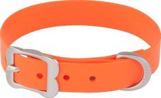 RED DINGO Vodeodolný oranžový obojok VIVID Red dingo