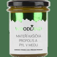 Medino Mateří kašička propolis a pyl v medu 250g