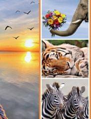 FANDY Fotoalbum 10x15 300 foto 2-up Fauna 2