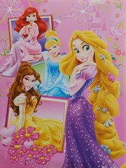 Disney Fotoalbum samolepicí 22,5x28 cm 40 stran dětské Disney 02 princezny